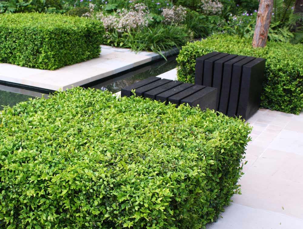 large garden London